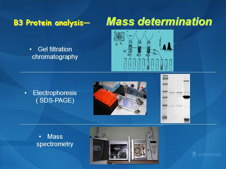 B3 Protein analysis— Mass determination Gel filtration chromatography Electrophoresis ( SDS-PAGE) Mass spectrometry