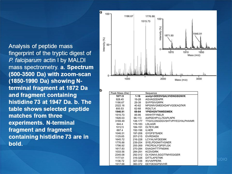 Analysis of peptide mass fingerprint of the tryptic digest of P.