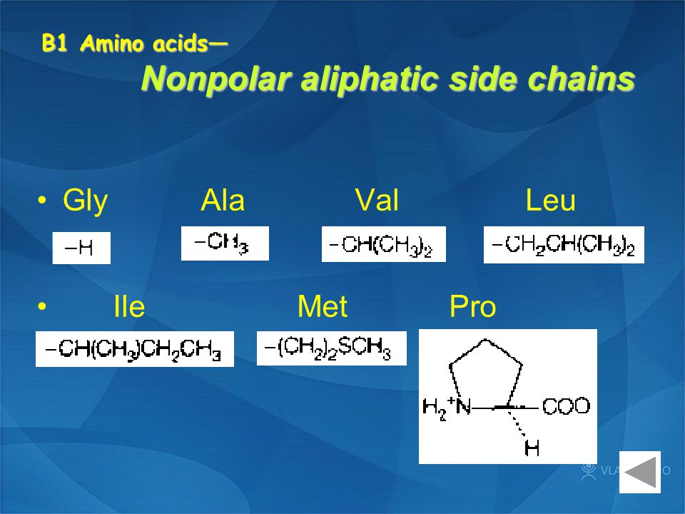 B1 Amino acids— Nonpolar aliphatic side chains Gly Ala Val Leu Ile Met Pro