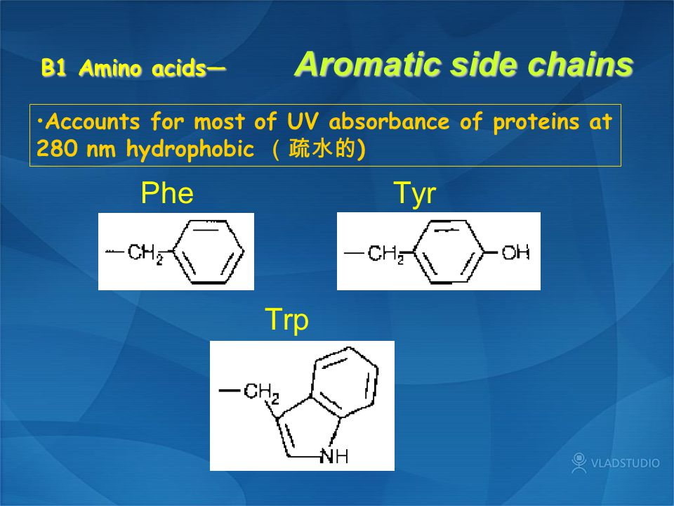 B1 Amino acids— Aromatic side chains Phe Tyr Trp Accounts for most of UV absorbance of proteins at 280 nm hydrophobic (疏水的 )