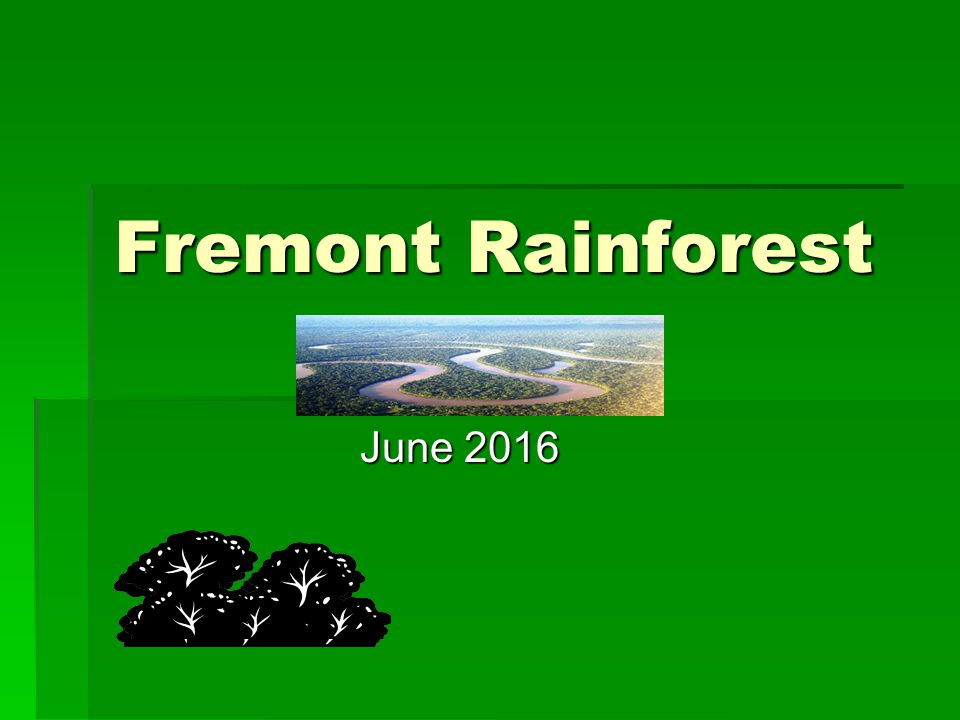 Fremont Rainforest June 2016