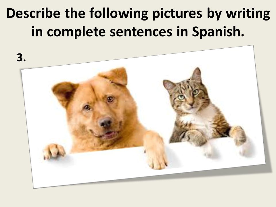 Describe the following pictures by writing in complete sentences in Spanish. 3.