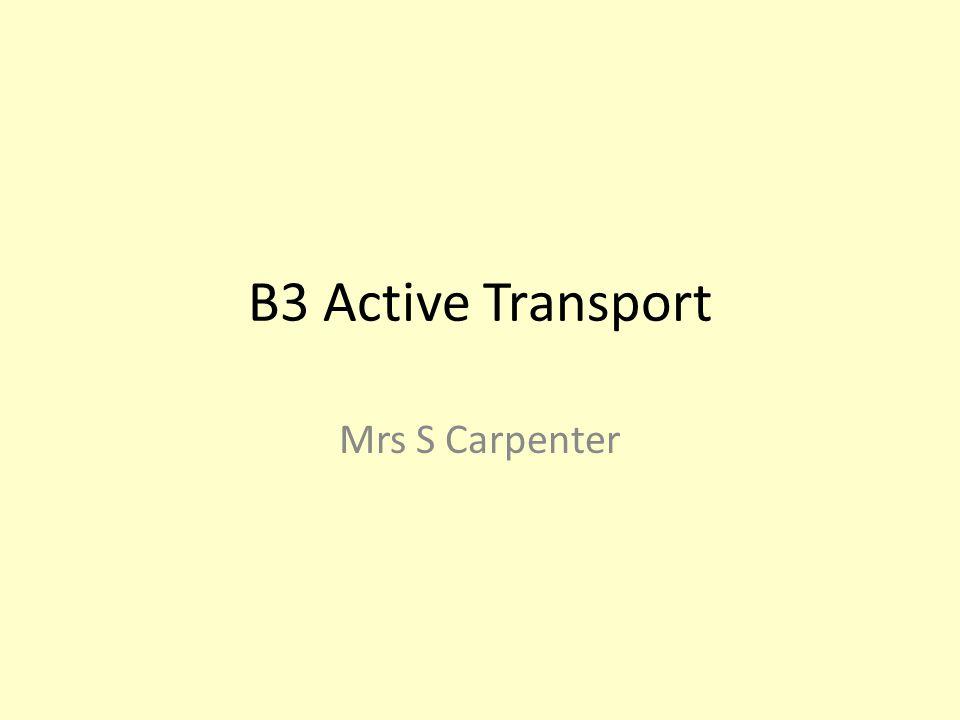 B3 Active Transport Mrs S Carpenter