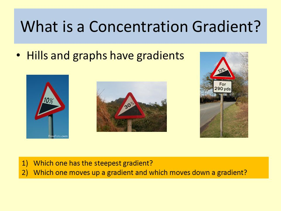 What is a Concentration Gradient.