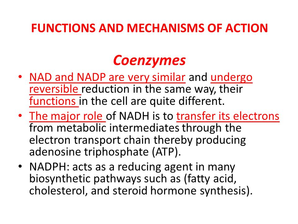 FUNCTIONS AND MECHANISMS OF ACTION Coenzymes NAD and NADP are very similar and undergo reversible reduction in the same way, their functions in the ce