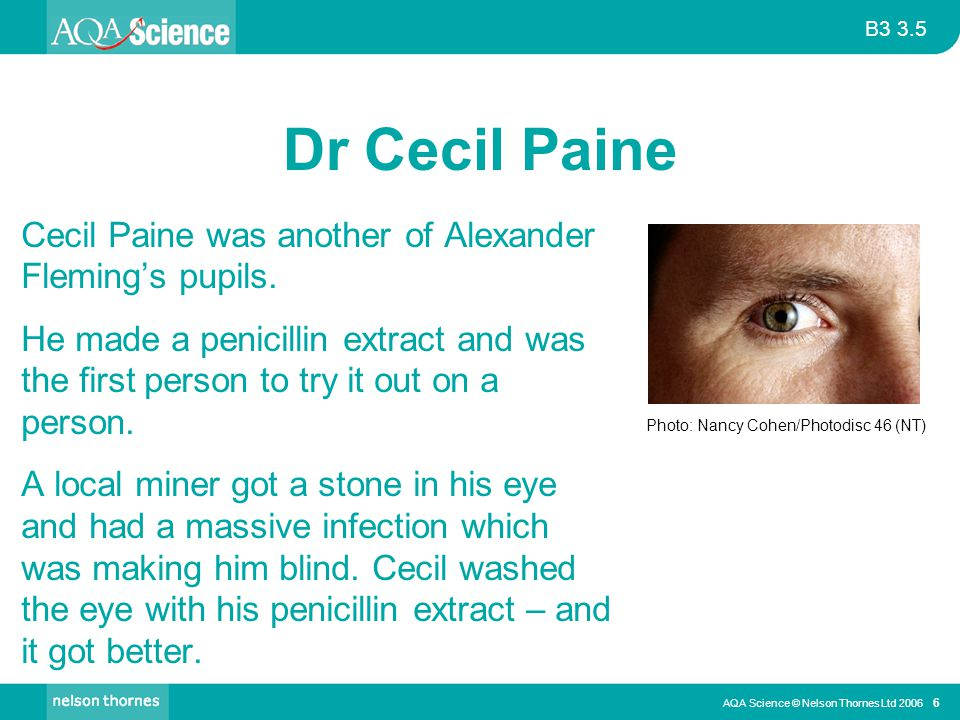 B3 3.5 AQA Science © Nelson Thornes Ltd 2006 6 Dr Cecil Paine Cecil Paine was another of Alexander Fleming's pupils. He made a penicillin extract and