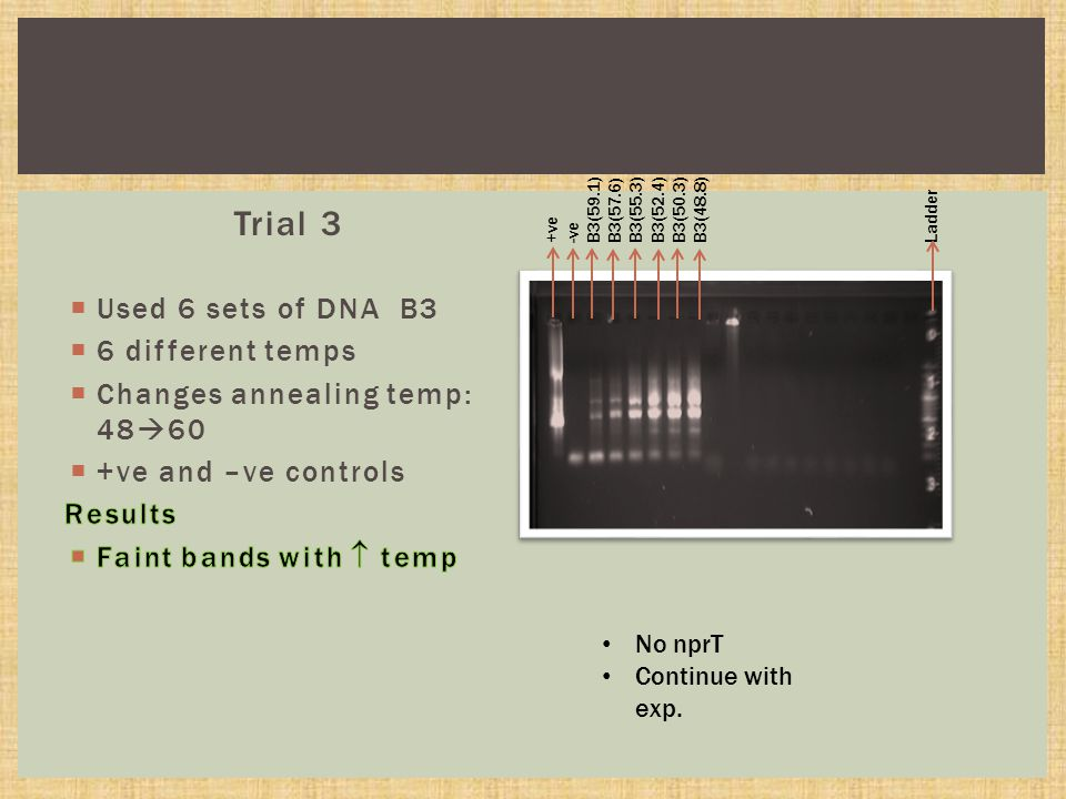 Trial 3 No nprT Continue with exp.