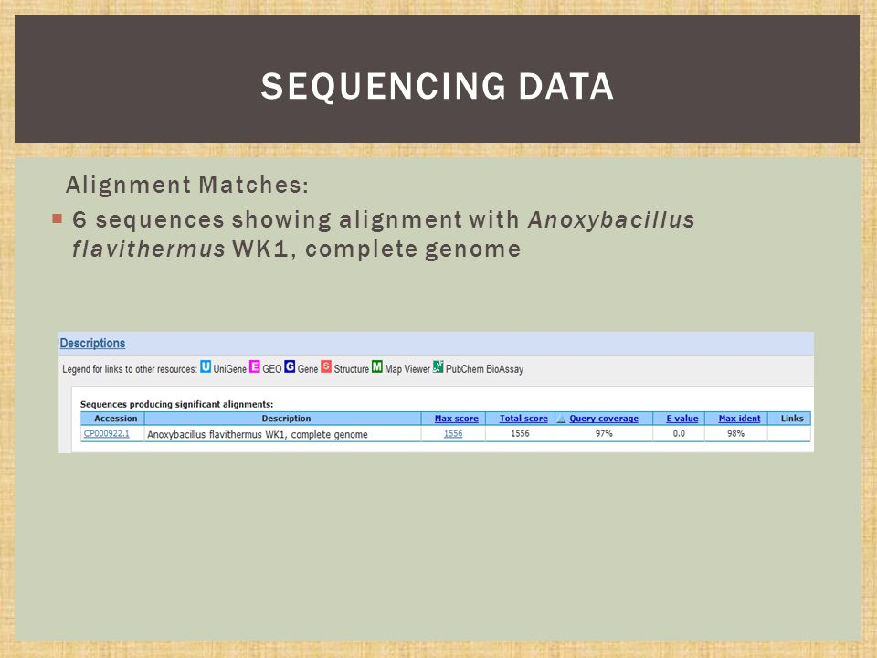 Alignment Matches:  6 sequences showing alignment with Anoxybacillus flavithermus WK1, complete genome SEQUENCING DATA