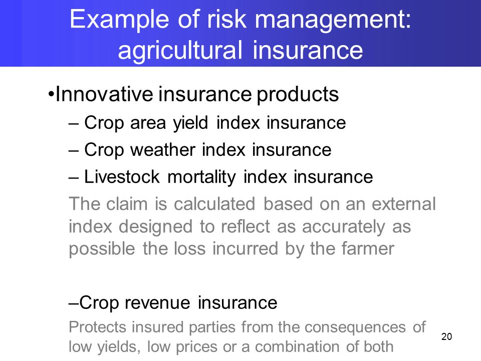 Innovative insurance products – Crop area yield index insurance – Crop weather index insurance – Livestock mortality index insurance The claim is calculated based on an external index designed to reflect as accurately as possible the loss incurred by the farmer –Crop revenue insurance Protects insured parties from the consequences of low yields, low prices or a combination of both Example of risk management: agricultural insurance 20