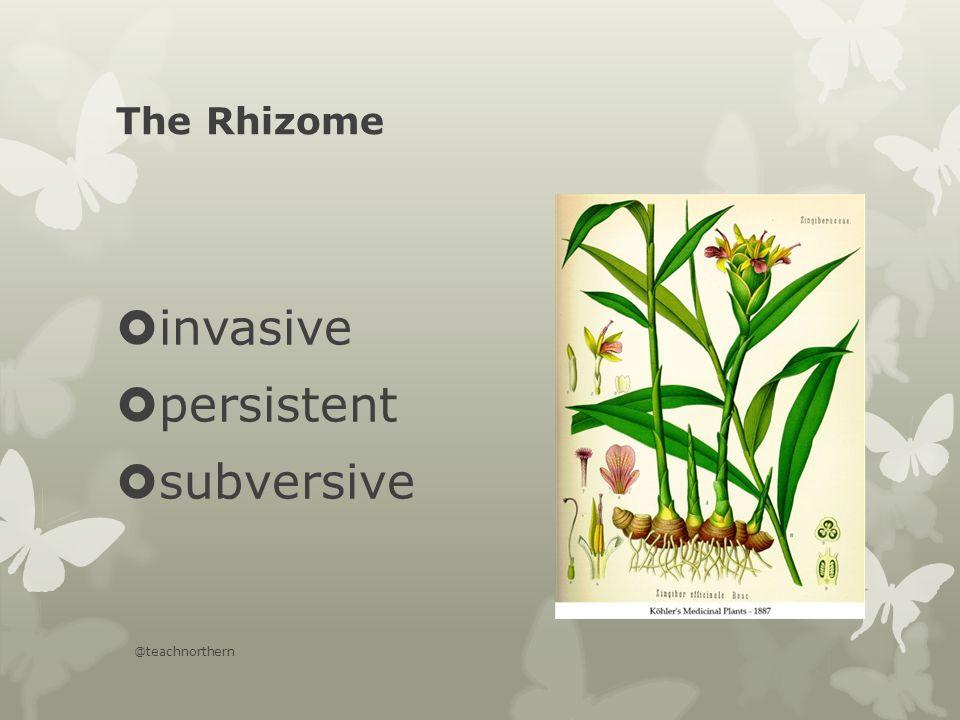 The Rhizome  invasive  persistent  subversive @teachnorthern