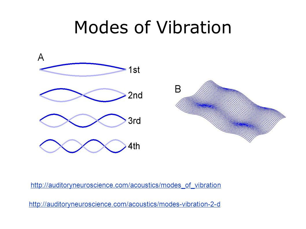 Modes of Vibration http://auditoryneuroscience.com/acoustics/modes-vibration-2-d http://auditoryneuroscience.com/acoustics/modes_of_vibration