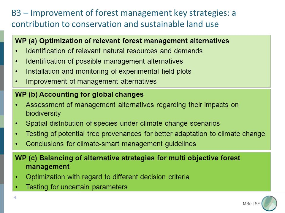 B3 – Improvement of forest management key strategies: a contribution to conservation and sustainable land use 4 WP (c) Balancing of alternative strategies for multi objective forest management Optimization with regard to different decision criteria Testing for uncertain parameters WP (a) Optimization of relevant forest management alternatives Identification of relevant natural resources and demands Identification of possible management alternatives Installation and monitoring of experimental field plots Improvement of management alternatives WP (b) Accounting for global changes Assessment of management alternatives regarding their impacts on biodiversity Spatial distribution of species under climate change scenarios Testing of potential tree provenances for better adaptation to climate change Conclusions for climate-smart management guidelines