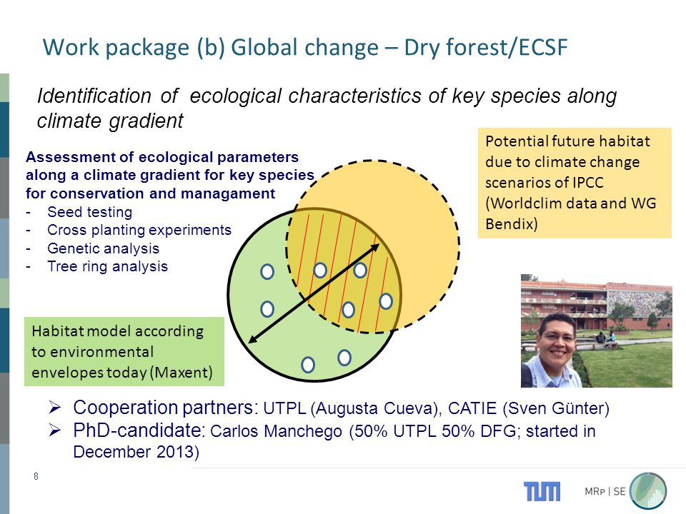 Assessment of ecological parameters along a climate gradient for key species for conservation and managament -Seed testing -Cross planting experiments -Genetic analysis -Tree ring analysis Work package (b) Global change – Dry forest/ECSF 8 Habitat model according to environmental envelopes today (Maxent) Potential future habitat due to climate change scenarios of IPCC (Worldclim data and WG Bendix) Identification of ecological characteristics of key species along climate gradient  Cooperation partners: UTPL (Augusta Cueva), CATIE (Sven Günter)  PhD-candidate: Carlos Manchego (50% UTPL 50% DFG; started in December 2013)
