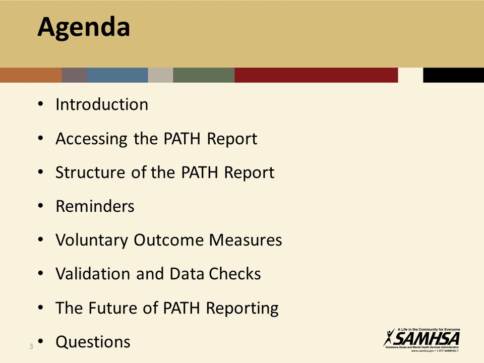 3 Introduction Accessing the PATH Report Structure of the PATH Report Reminders Voluntary Outcome Measures Validation and Data Checks The Future of PATH Reporting Questions Agenda