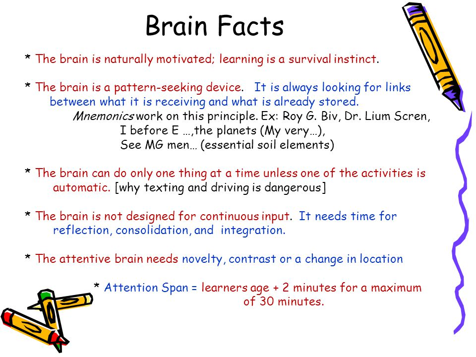 * The brain is naturally motivated; learning is a survival instinct.