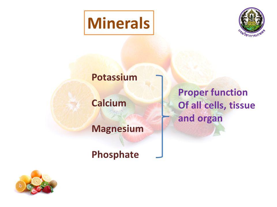 Minerals Potassium Calcium Magnesium Phosphate Proper function Of all cells, tissue and organ