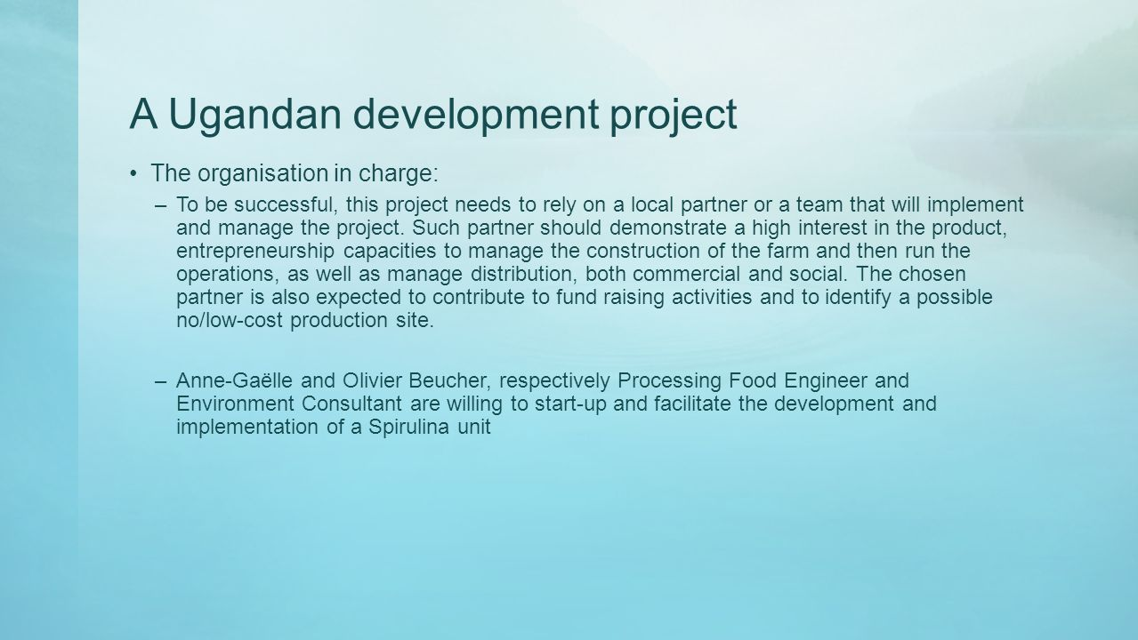 A Ugandan development project The organisation in charge: –To be successful, this project needs to rely on a local partner or a team that will implement and manage the project.