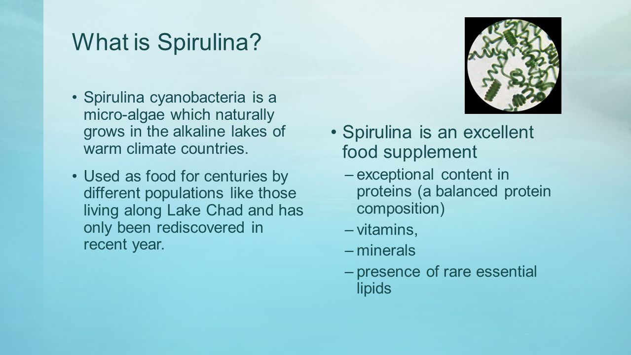 What is Spirulina.