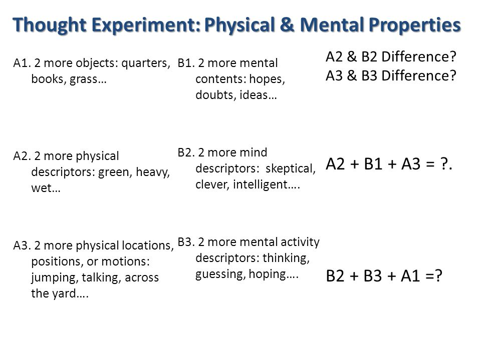 Thought Experiment: Physical & Mental Properties A1.