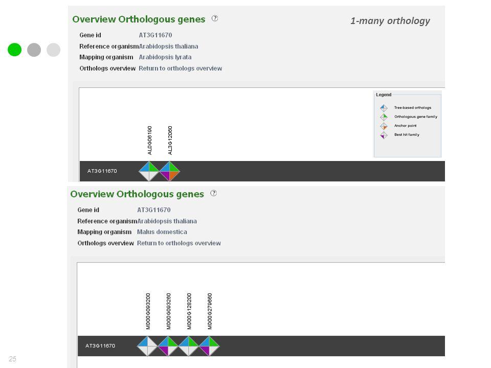 25 1-many orthology