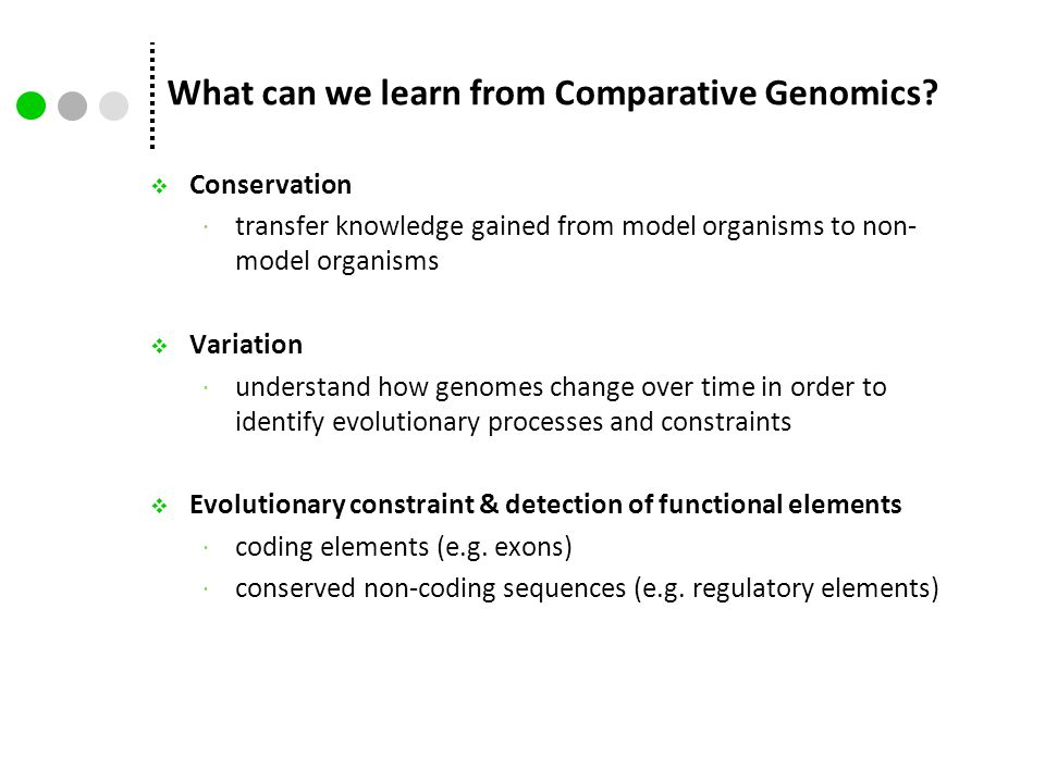 What can we learn from Comparative Genomics?  Conservation  transfer knowledge gained from model organisms to non- model organisms  Variation  und