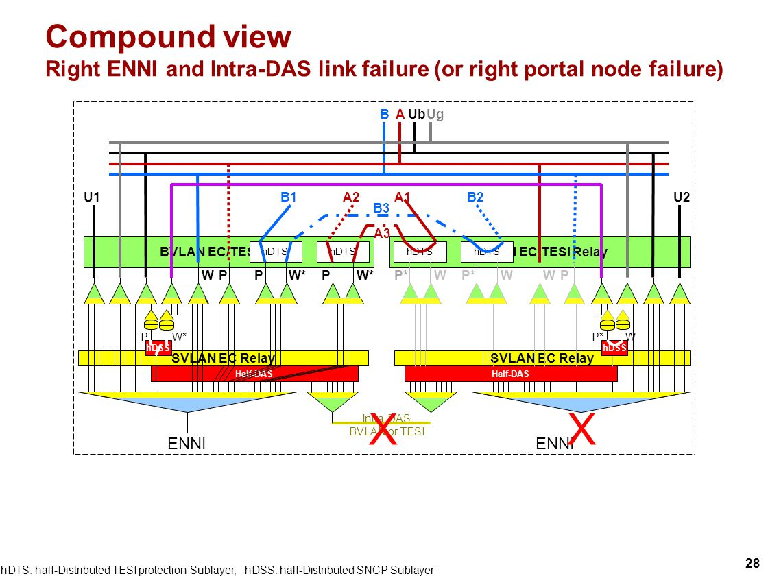 28 BVLAN EC/TESI Relay Compound view Right ENNI and Intra-DAS link failure (or right portal node failure) P W W P Half-DAS BA Intra-DAS BVLAN or TESI ENNI SVLAN EC Relay Ub Half-DAS hDTS W*P hDTS W*P B1A2 hDTS WP* hDTS WP* B3 B2A1 A3 U1U2 W*P Ug WP* XX hDSS hDTS: half-Distributed TESI protection Sublayer, hDSS: half-Distributed SNCP Sublayer