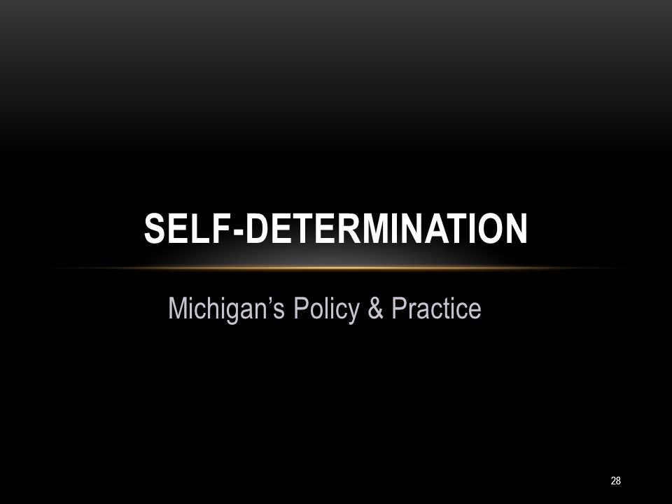 28 Michigan's Policy & Practice SELF-DETERMINATION