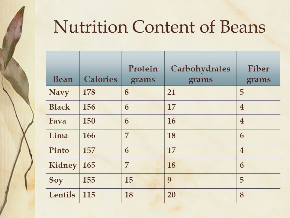 Nutrition Content of Beans BeanCalories Protein grams Carbohydrates grams Fiber grams Navy1788215 Black1566174 Fava1506164 Lima1667186 Pinto1576174 Ki