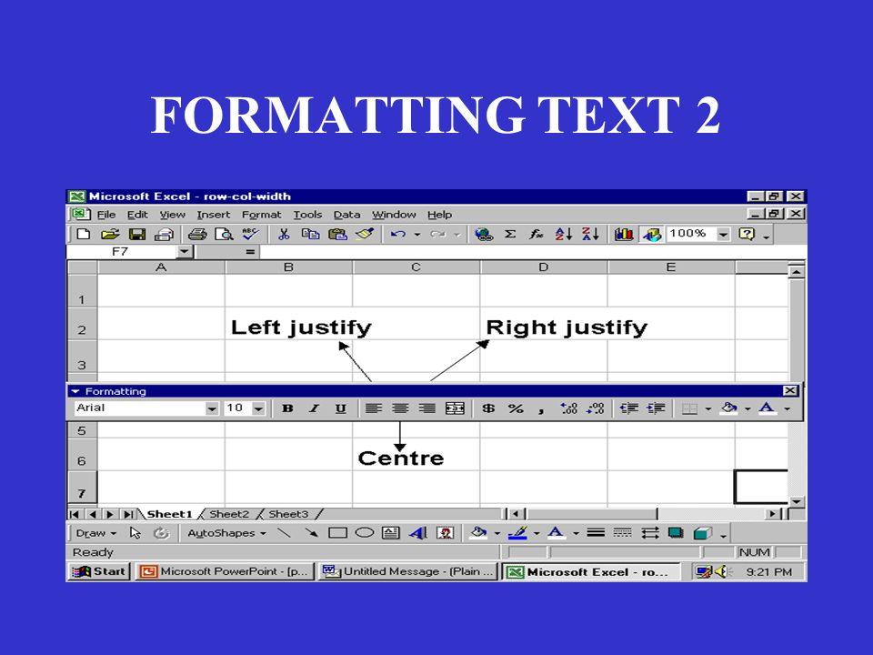 FORMATTING TEXT 2