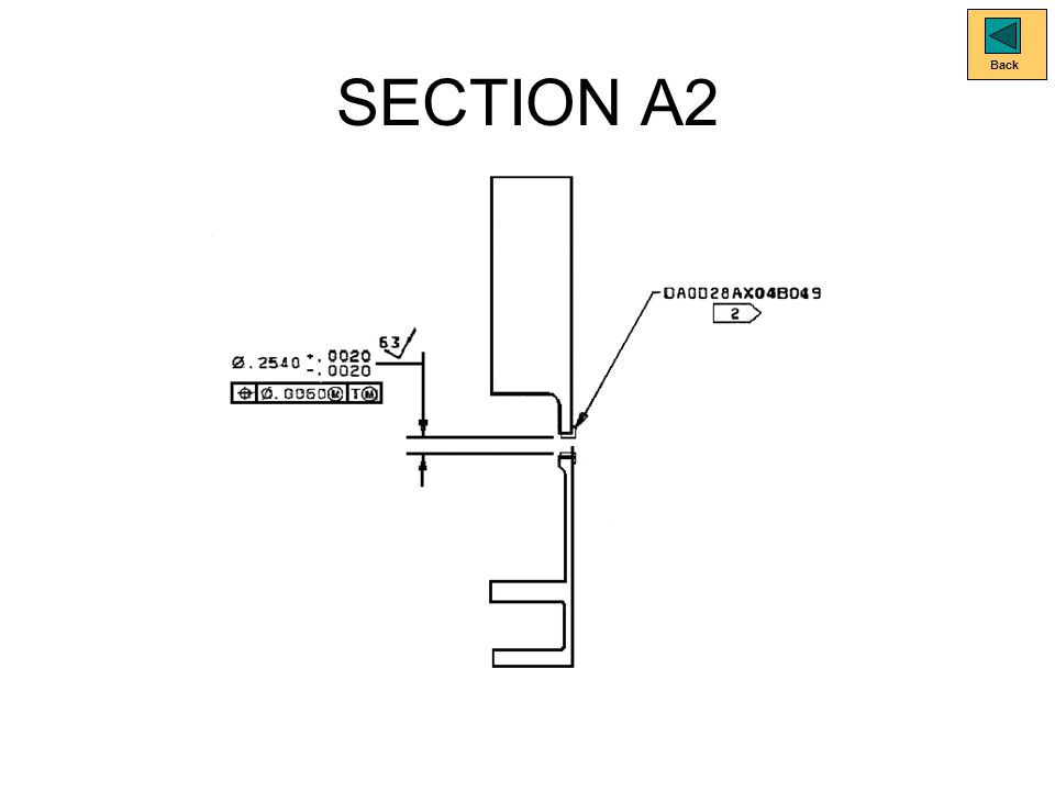 SECTION A2 Back