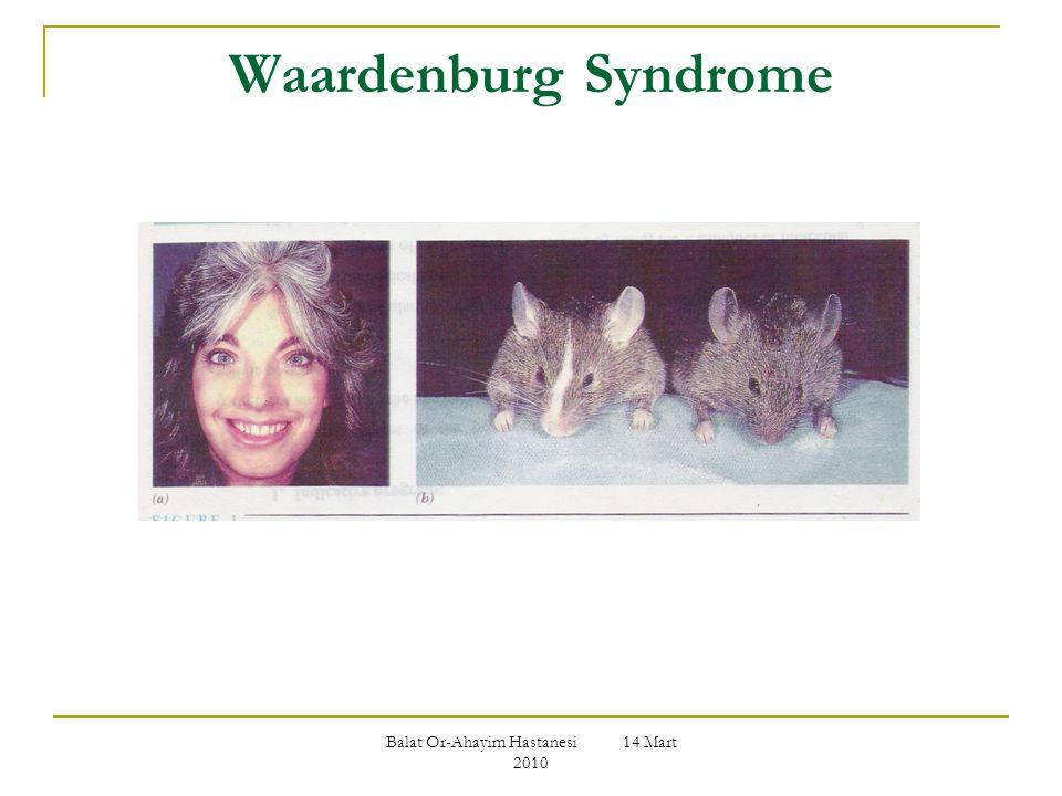 Balat Or-Ahayim Hastanesi 14 Mart 2010 Waardenburg Syndrome