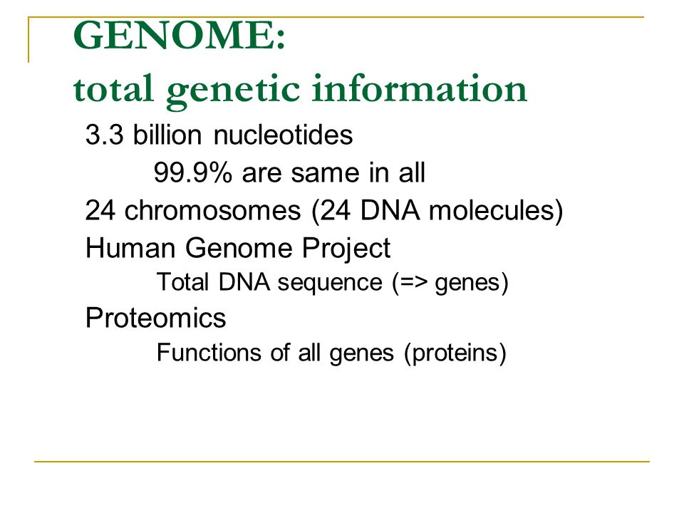 GENOME: total genetic information 3.3 billion nucleotides 99.9% are same in all 24 chromosomes (24 DNA molecules) Human Genome Project Total DNA seque