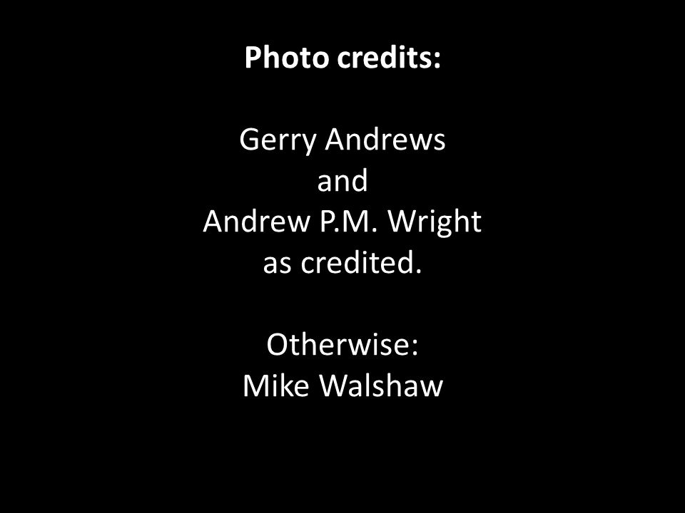 Photo credits: Gerry Andrews and Andrew P.M. Wright as credited. Otherwise: Mike Walshaw