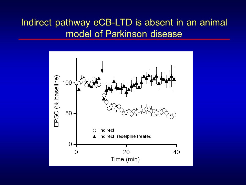 Indirect pathway eCB-LTD is absent in an animal model of Parkinson disease Time (min)