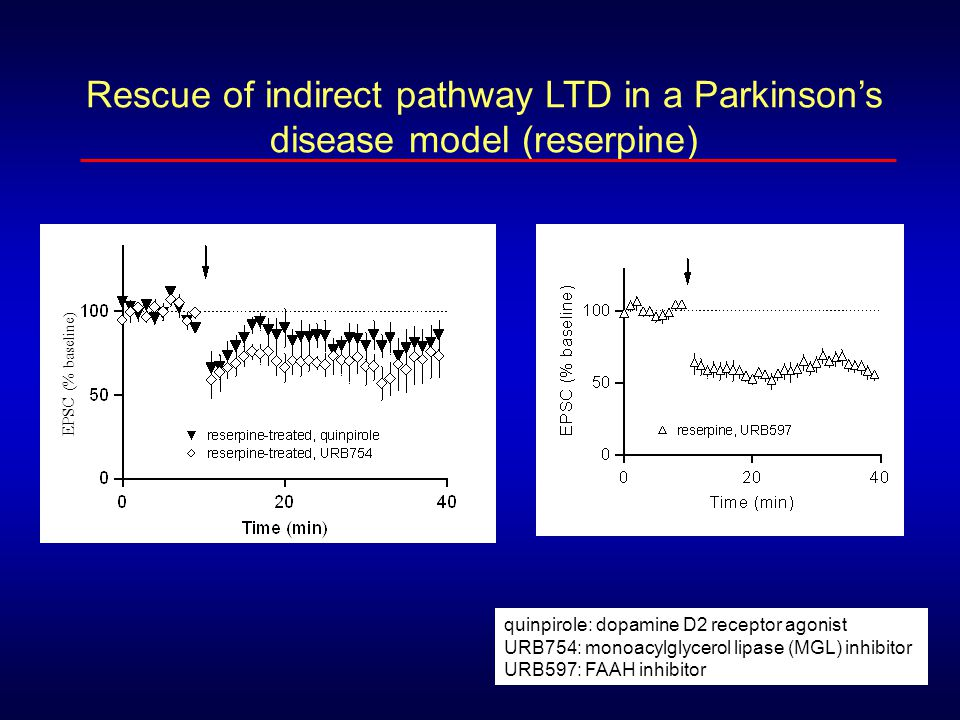 quinpirole: dopamine D2 receptor agonist URB754: monoacylglycerol lipase (MGL) inhibitor URB597: FAAH inhibitor Rescue of indirect pathway LTD in a Pa