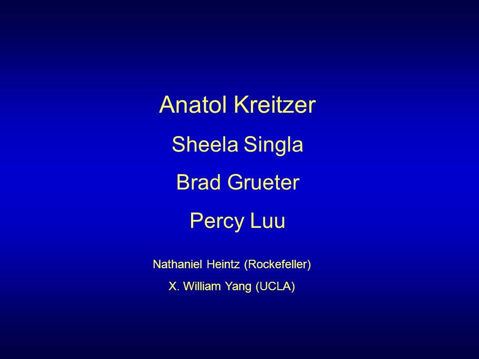 Anatol Kreitzer Sheela Singla Brad Grueter Percy Luu Nathaniel Heintz (Rockefeller) X. William Yang (UCLA)