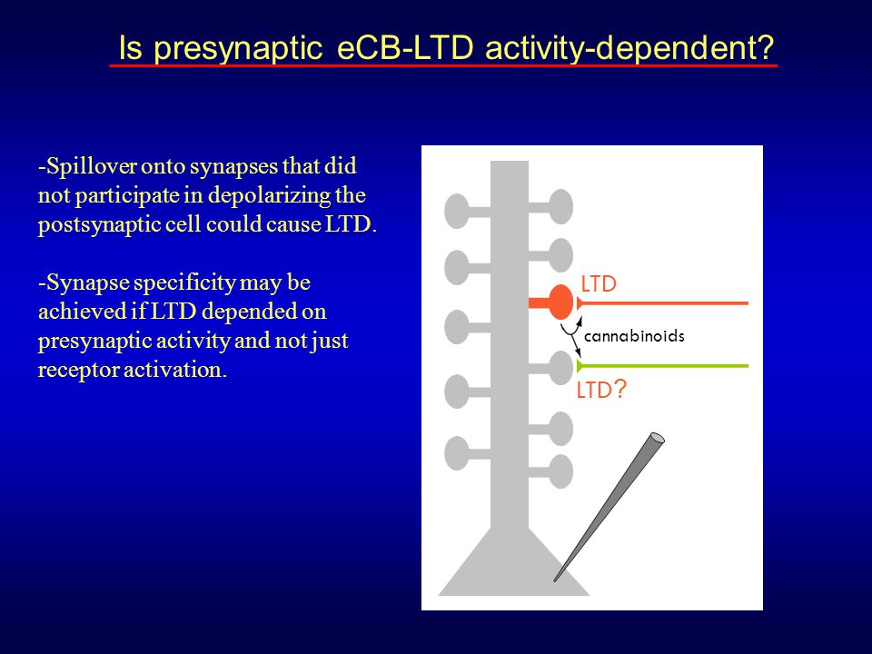 LTD LTD ? cannabinoids Is presynaptic eCB-LTD activity-dependent? -Spillover onto synapses that did not participate in depolarizing the postsynaptic c