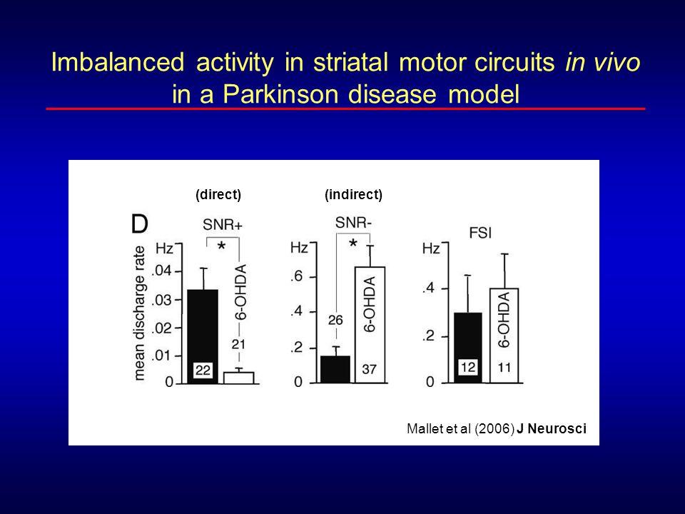 Mallet et al (2006) J Neurosci (direct)(indirect) Imbalanced activity in striatal motor circuits in vivo in a Parkinson disease model