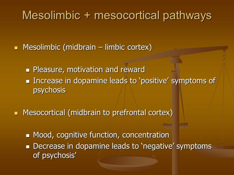 Mesolimbic + mesocortical pathways Mesolimbic (midbrain – limbic cortex) Mesolimbic (midbrain – limbic cortex) Pleasure, motivation and reward Pleasur