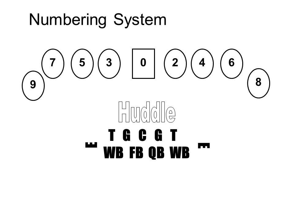 Numbering System T G C G T WB FB QB WB E E 0 8 9 756342
