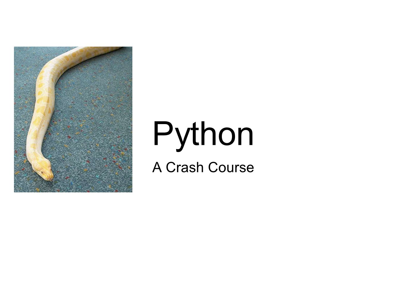 Python? Isn't that a snake? Yes, but it is also a...