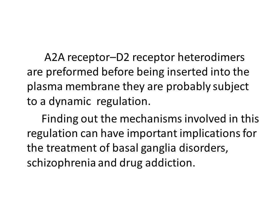 A2A receptor–D2 receptor heterodimers are preformed before being inserted into the plasma membrane they are probably subject to a dynamic regulation.