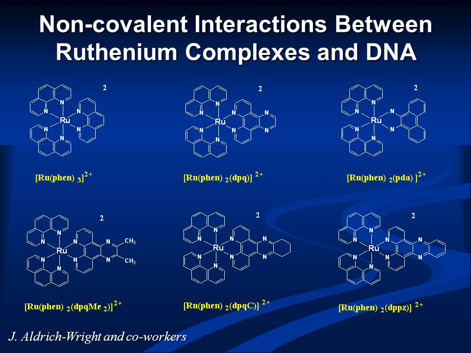 Non-covalent Interactions Between Ruthenium Complexes and DNA J. Aldrich-Wright and co-workers