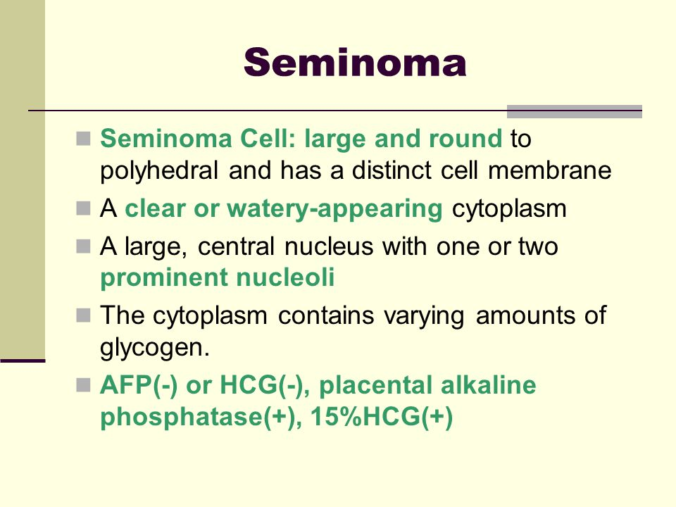Seminoma Cell: large and round to polyhedral and has a distinct cell membrane A clear or watery-appearing cytoplasm A large, central nucleus with one or two prominent nucleoli The cytoplasm contains varying amounts of glycogen.