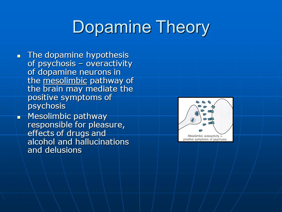 Dopamine Theory The dopamine hypothesis of psychosis – overactivity of dopamine neurons in the mesolimbic pathway of the brain may mediate the positiv