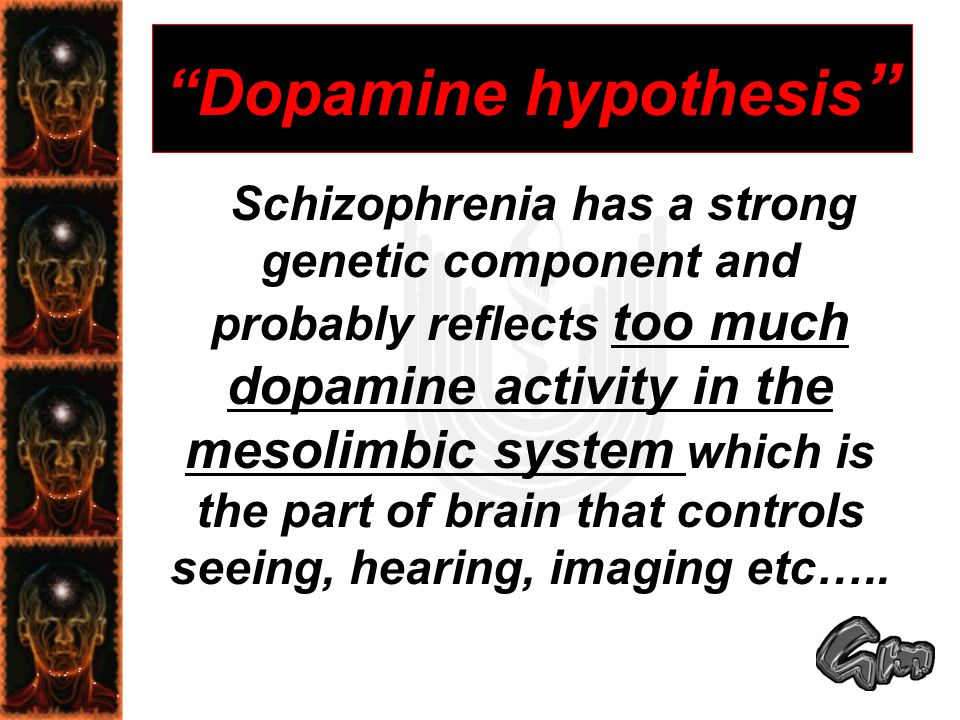 Dopamine hypothesis Schizophrenia has a strong genetic component and probably reflects too much dopamine activity in the mesolimbic system which is the part of brain that controls seeing, hearing, imaging etc…..