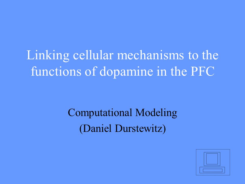 Linking cellular mechanisms to the functions of dopamine in the PFC Computational Modeling (Daniel Durstewitz)