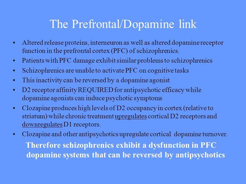 The Prefrontal/Dopamine link Altered release proteins, interneuron as well as altered dopamine receptor function in the prefrontal cortex (PFC) of schizophrenics.