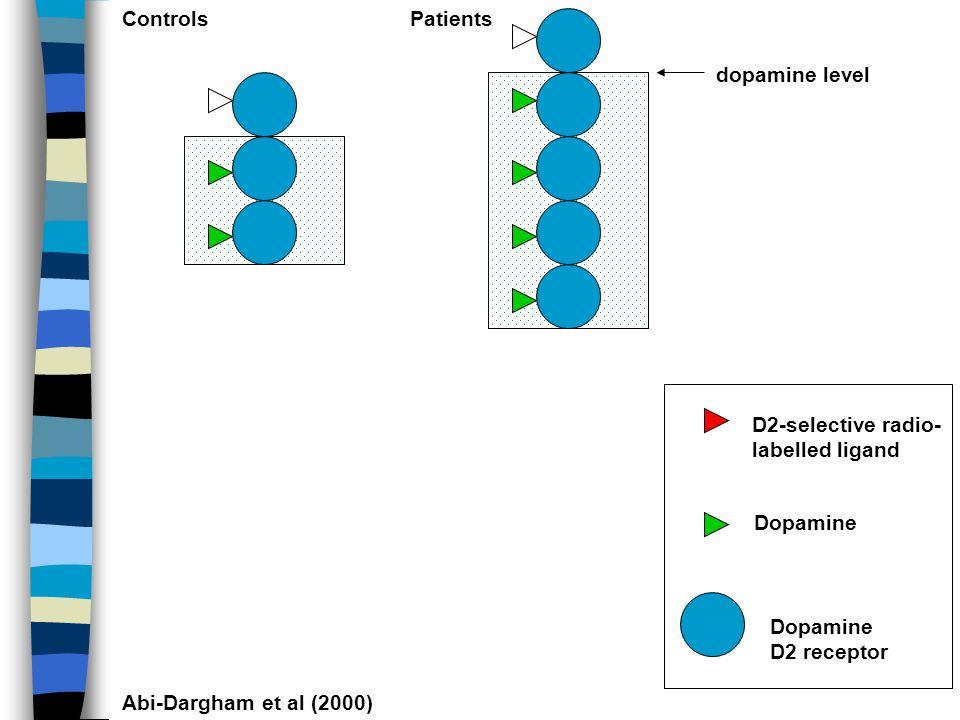 mesolimbic nigrostriatal mesocortical (nucleus accumbens)