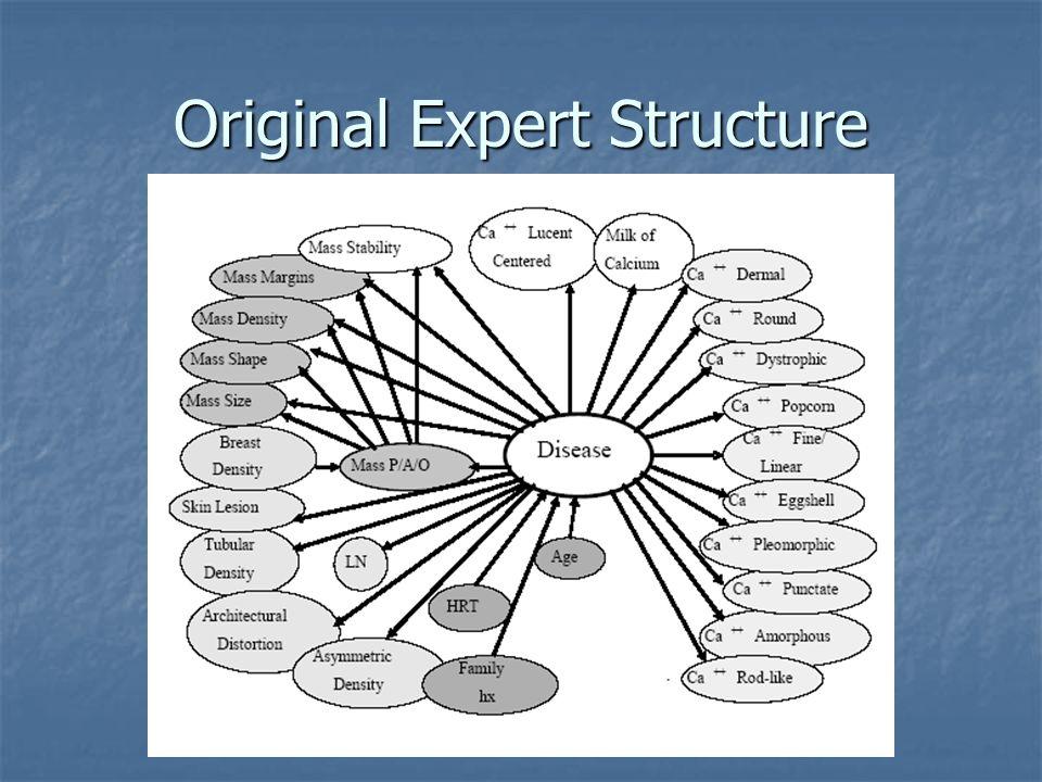 Original Expert Structure
